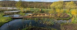 Les bons moyens du microorganisme végétal les rappels