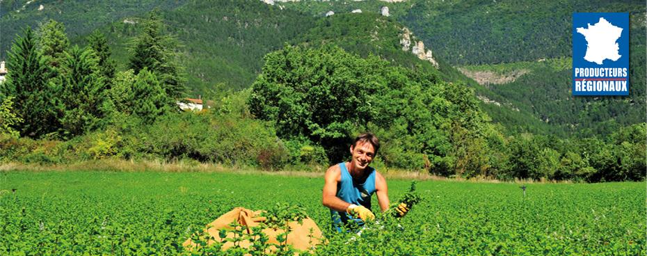 Origine france jardin bio for Jardin bio 2015