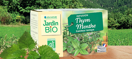 Infusion bio thym menthe Jardin BiO étic