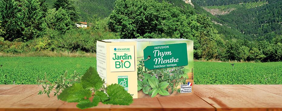 Infusion thym menthe Jardin BiO étic