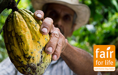Jardin BiO étic est investit dans le Commerce Équitable.