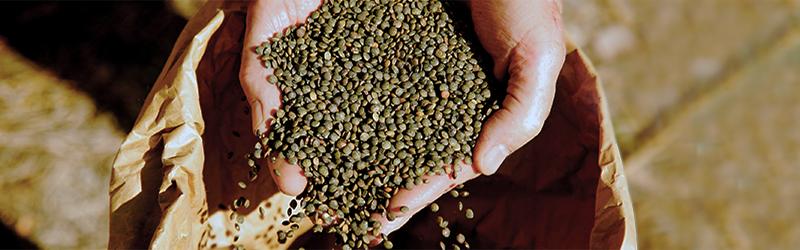 Produits bio durables