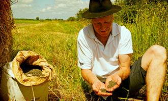 cultivateur Jardin BiO étic lentilles