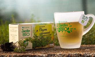 infusion thym citronné dans une tasse jardin bio