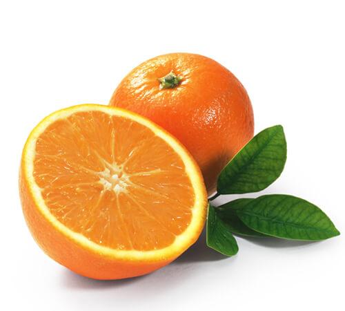 L'orange de Sparte pour Jardin BiO