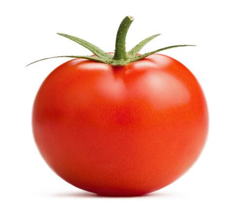 La tomate d'Italie pour Jardin BiO étic