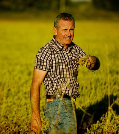 agriculteur riz de camargue