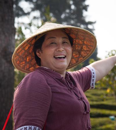 agricultrice thé vert de chine Jardin BiO étic