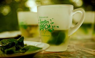 tasse jardin bio avec infusion thé vert menthe poivrée