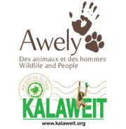 Jardin BiO étic' soutient les associations Awely et Kalaweit dans leur combat pour la sauvegarde des grands singes.