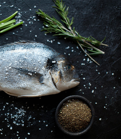 poisson bio Jardin BiO étic recette