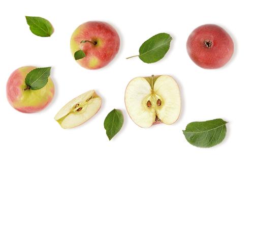 Filière pommes Jardin BiO
