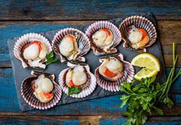 Image pour la recette saint jacques des charentes rôties sur lit de lentille
