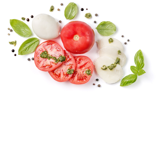 Filière tomates Jardin BiO