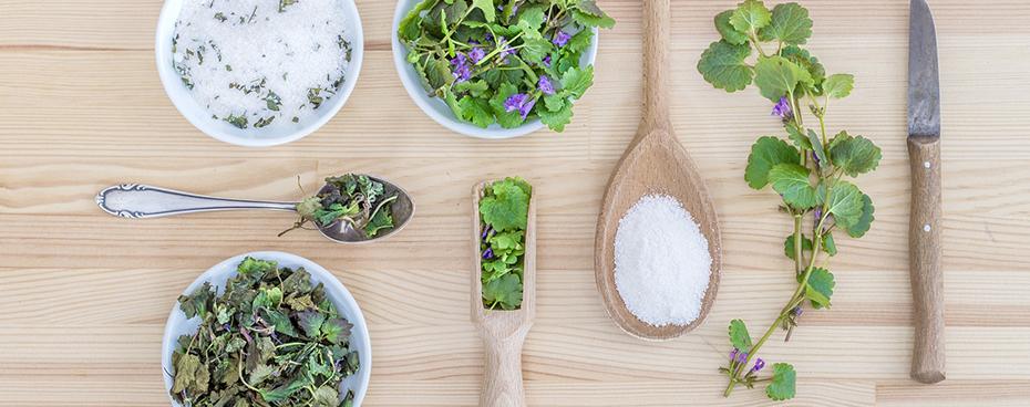 Limiter le sel avec Jardin BiO étic
