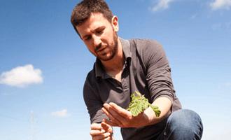 Romain, producteur bio de haricots en Vendée pour Jardin BiO étic