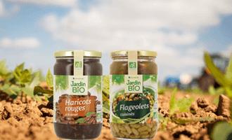 Filière flageolets et haricots rouges : partez aux origines du goût