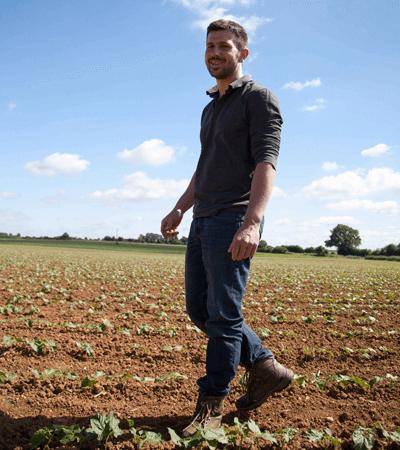 Partez à la rencontre de Romain, producteur de haricots secs en Vendée pour Jardin BiO étic