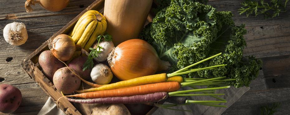 Découvrez les fruits et légumes de saison dans notre dossier du mois - Jardin BiO étic