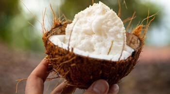 Découvrez la filière coco du Sri Lanka pour Jardin BiO étic