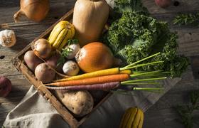 Fruits et legumes de saisons Jardin BiO etic