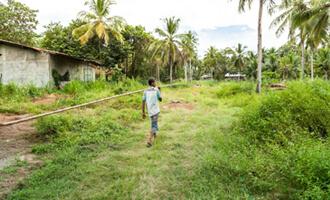 Découvrez la filière coco du Sri Lanka Jardin BiO étic