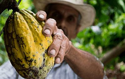 Commerce équitable Jardin BiO etic