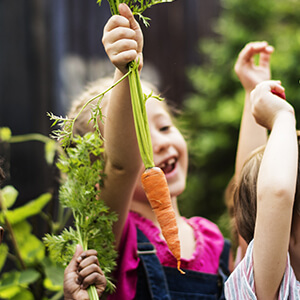 Innocuite et sante Jardin BiO etic